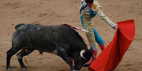 http://en.wikipedia.org/wiki/File:Madrid_Bullfight.JPG